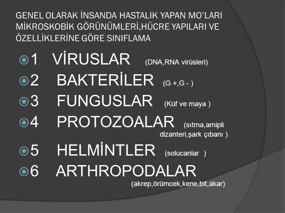1 VİRUSLAR (DNA,RNA virüsleri) 2 BAKTERİLER (G +,G - )
