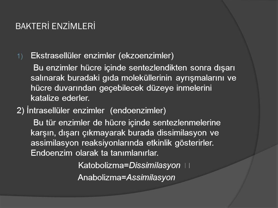 BAKTERİ ENZİMLERİ Ekstrasellüler enzimler (ekzoenzimler)
