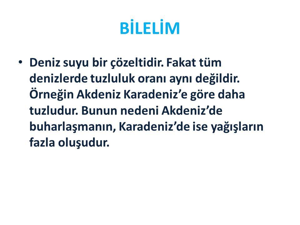BİLELİM