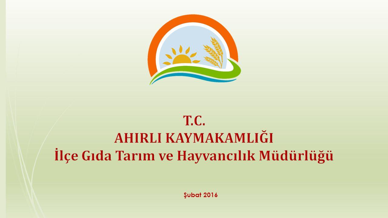 İlçe Gıda Tarım ve Hayvancılık Müdürlüğü