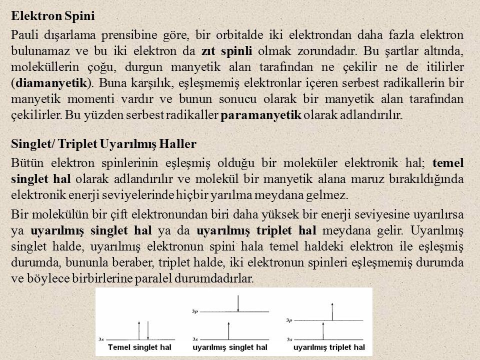 Elektron Spini