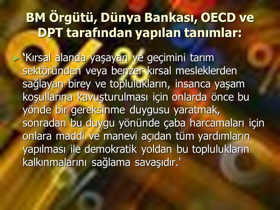 BM Örgütü, Dünya Bankası, OECD ve DPT tarafından yapılan tanımlar: