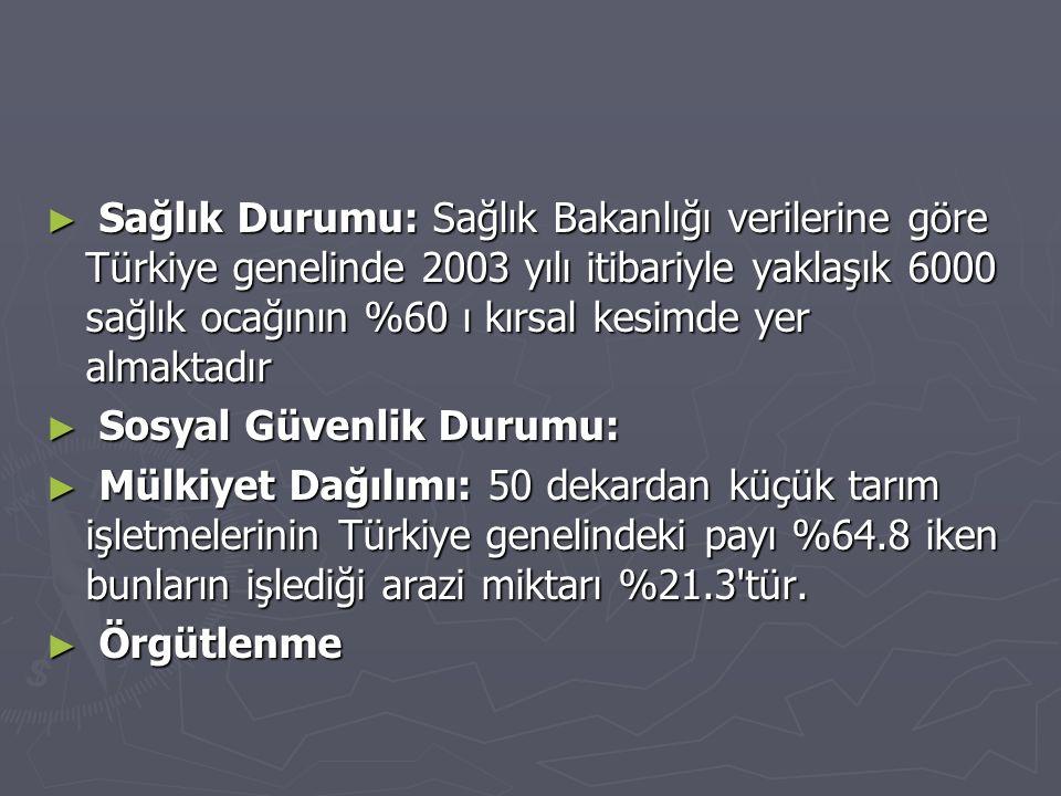 Sağlık Durumu: Sağlık Bakanlığı verilerine göre Türkiye genelinde 2003 yılı itibariyle yaklaşık 6000 sağlık ocağının %60 ı kırsal kesimde yer almaktadır