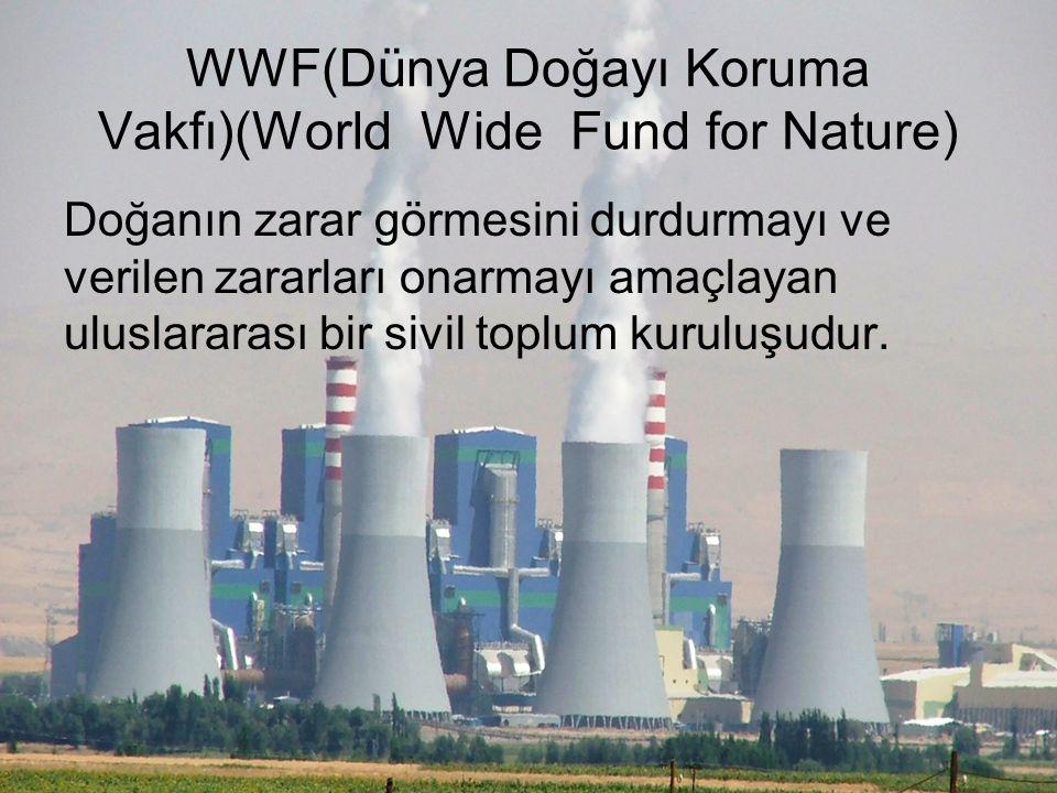 WWF(Dünya Doğayı Koruma Vakfı)(World Wide Fund for Nature)