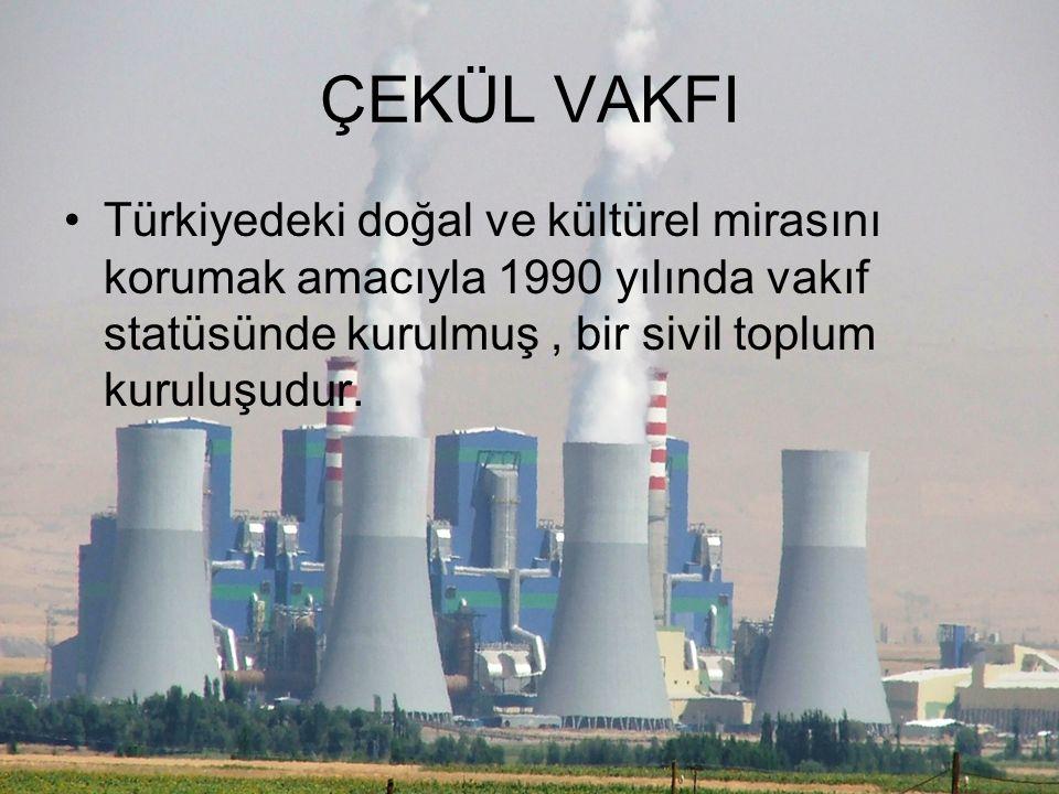 ÇEKÜL VAKFI Türkiyedeki doğal ve kültürel mirasını korumak amacıyla 1990 yılında vakıf statüsünde kurulmuş , bir sivil toplum kuruluşudur.