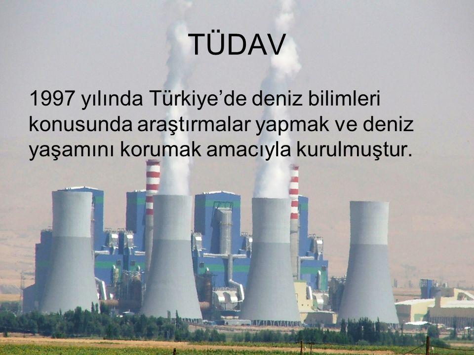 TÜDAV 1997 yılında Türkiye'de deniz bilimleri konusunda araştırmalar yapmak ve deniz yaşamını korumak amacıyla kurulmuştur.