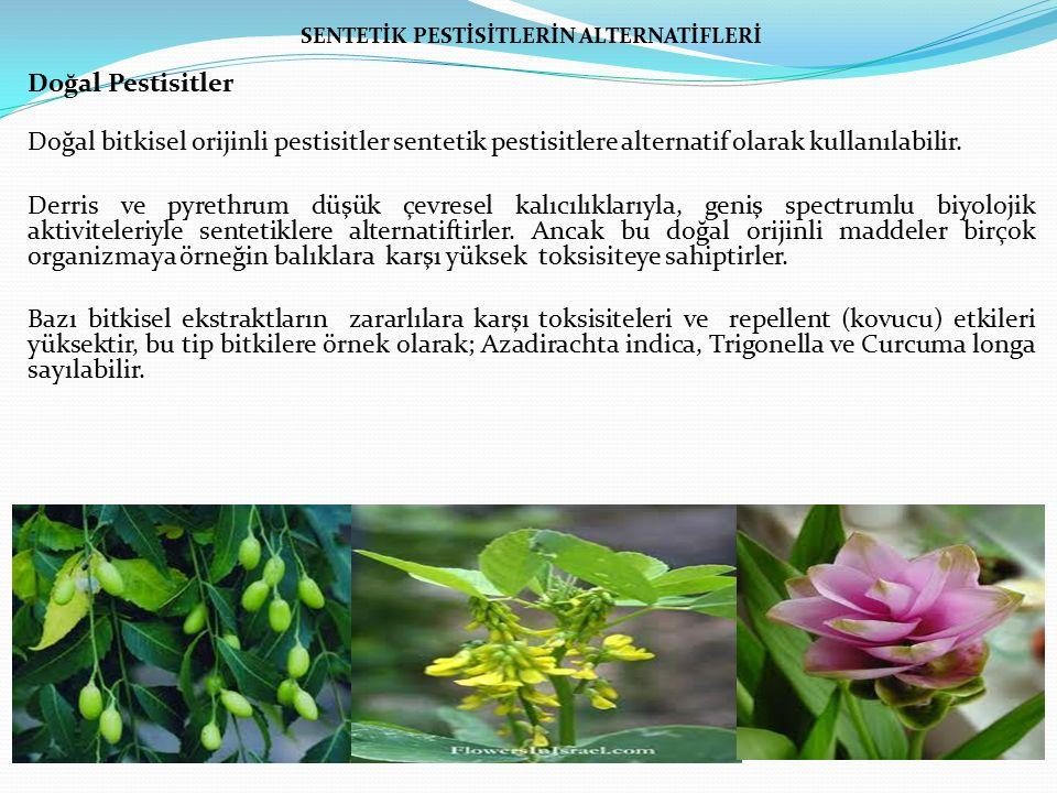 SENTETİK PESTİSİTLERİN ALTERNATİFLERİ