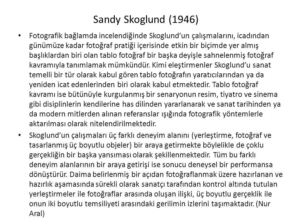 Sandy Skoglund (1946)