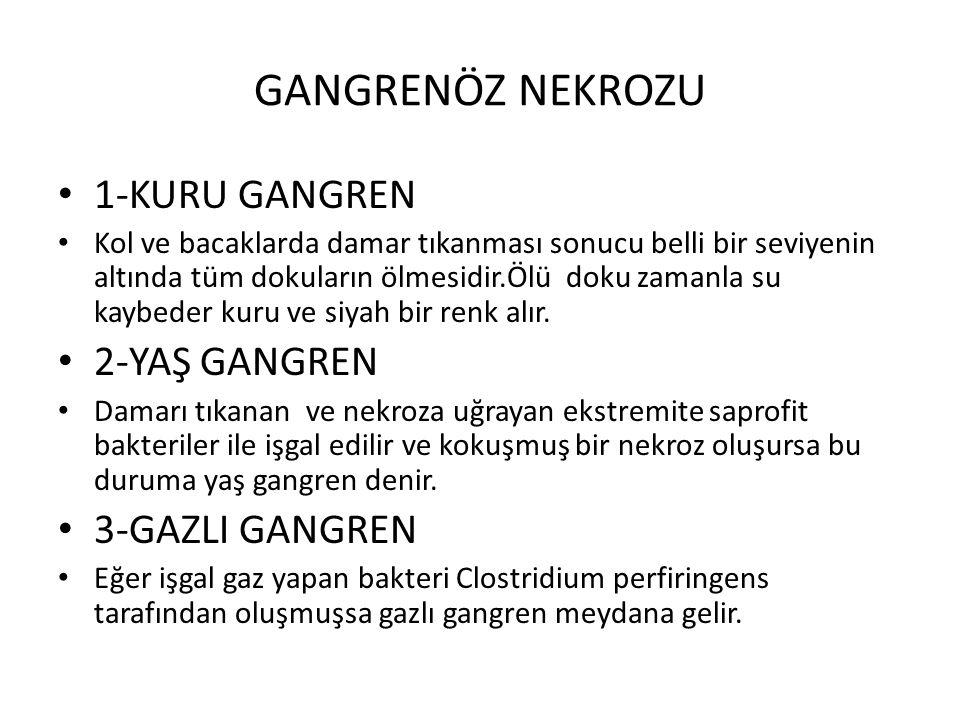 GANGRENÖZ NEKROZU 1-KURU GANGREN 2-YAŞ GANGREN 3-GAZLI GANGREN