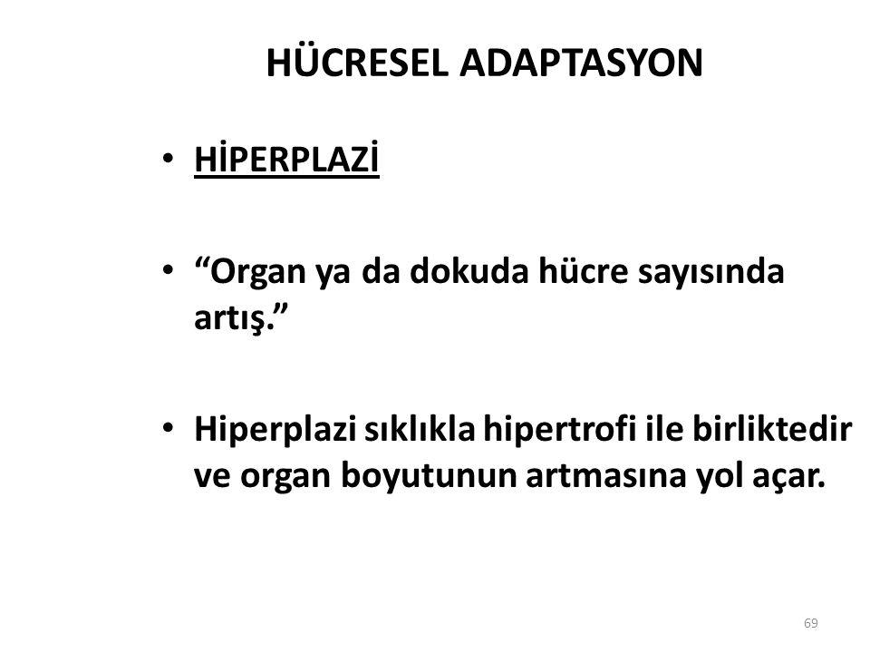 HÜCRESEL ADAPTASYON HİPERPLAZİ