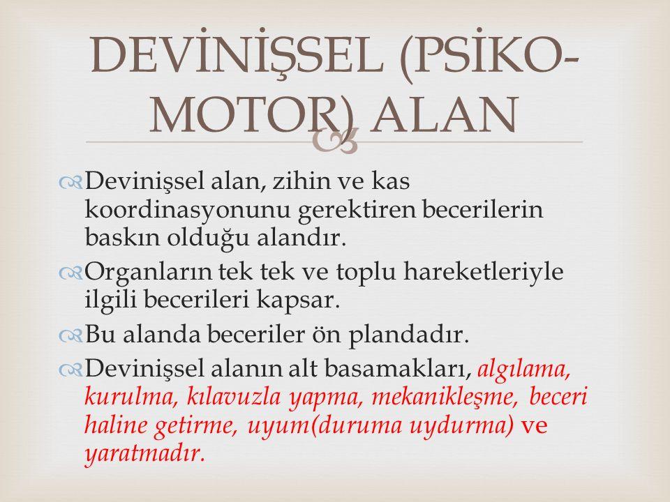 DEVİNİŞSEL (PSİKO-MOTOR) ALAN