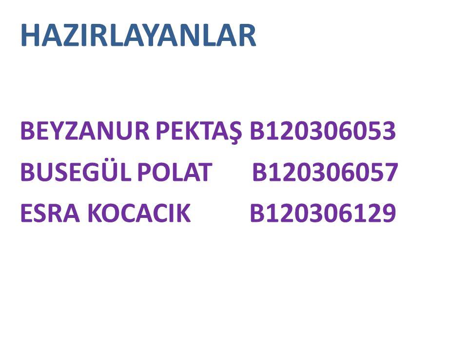 HAZIRLAYANLAR BEYZANUR PEKTAŞ B120306053 BUSEGÜL POLAT B120306057