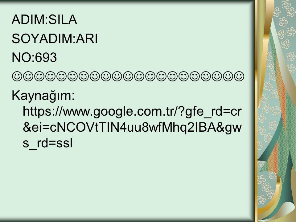ADIM:SILA SOYADIM:ARI. NO:693.