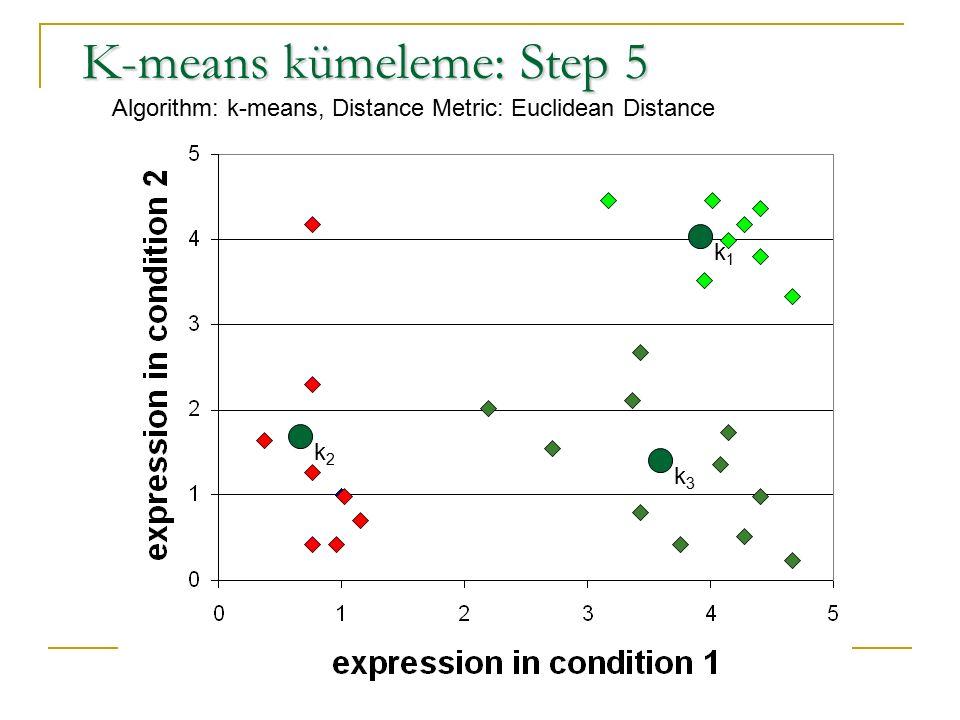 K-means kümeleme: Step 5