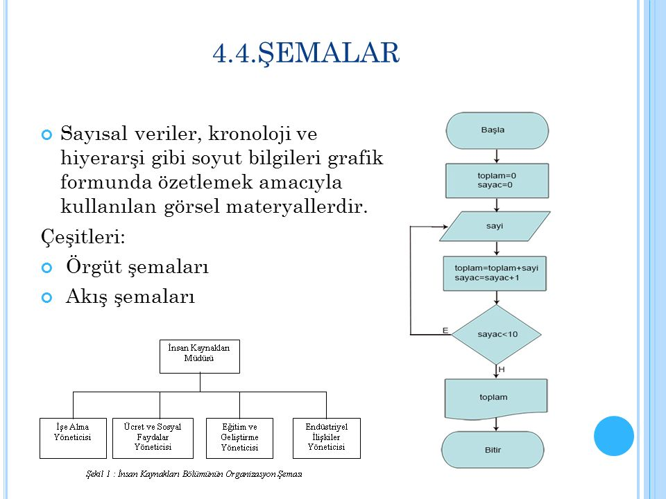 4.4.ŞEMALAR Sayısal veriler, kronoloji ve hiyerarşi gibi soyut bilgileri grafik formunda özetlemek amacıyla kullanılan görsel materyallerdir.