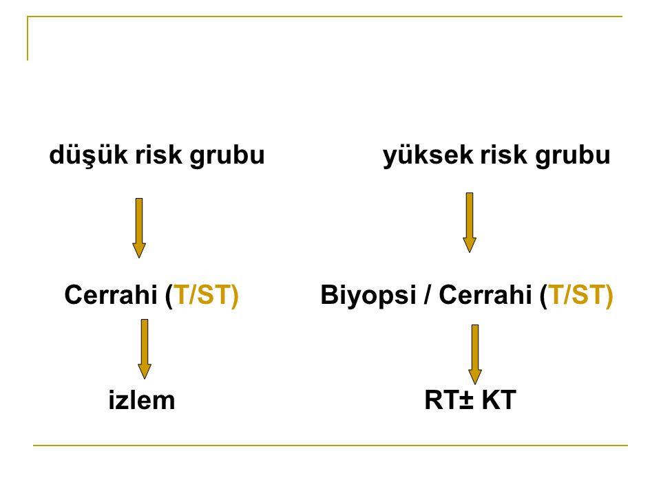 düşük risk grubu yüksek risk grubu