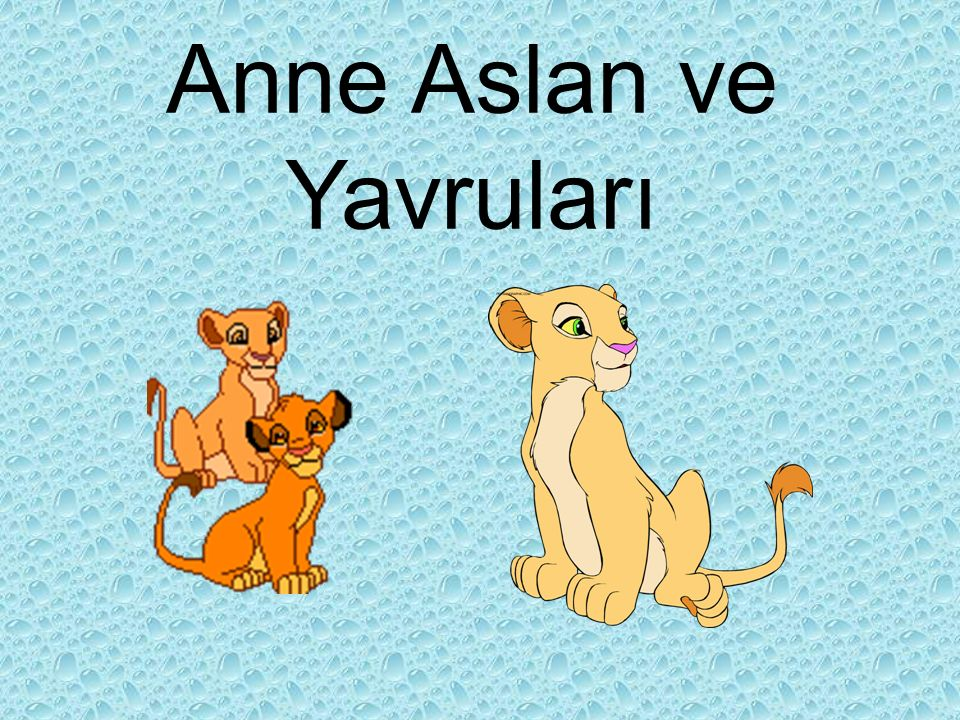 Anne Aslan ve Yavruları
