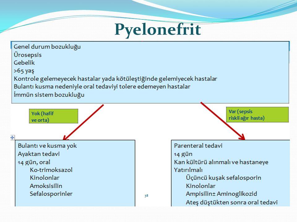 Pyelonefrit