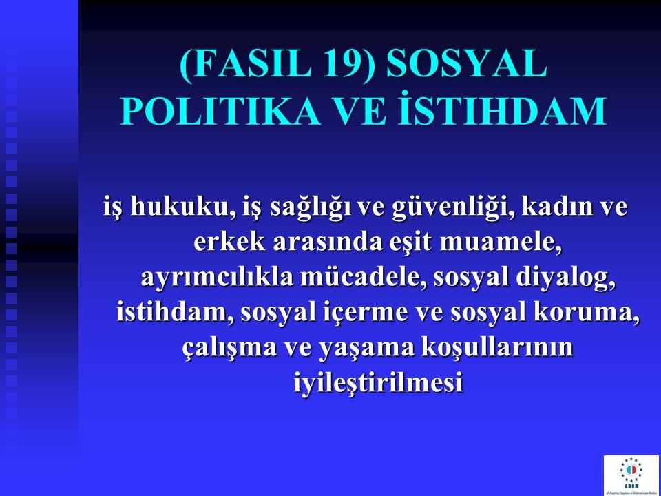 (FasIl 19) Sosyal Politika ve İstihdam