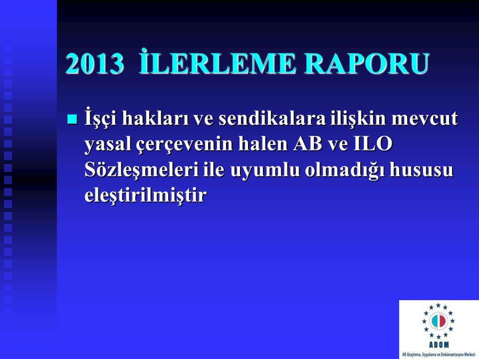 2013 İLERLEME RAPORU