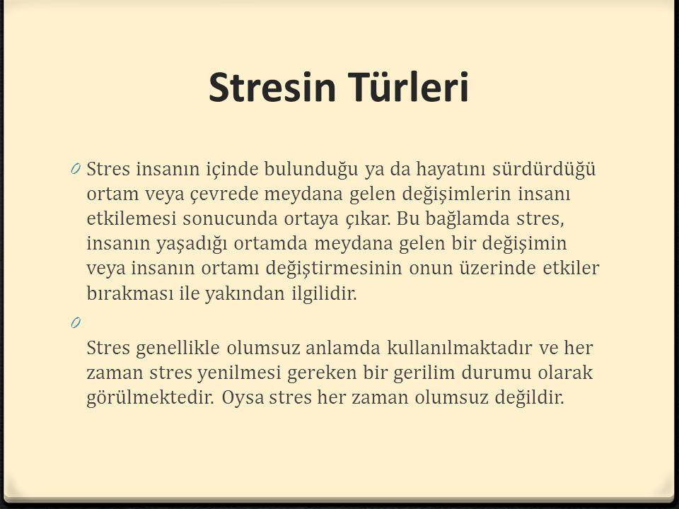 Stresin Türleri