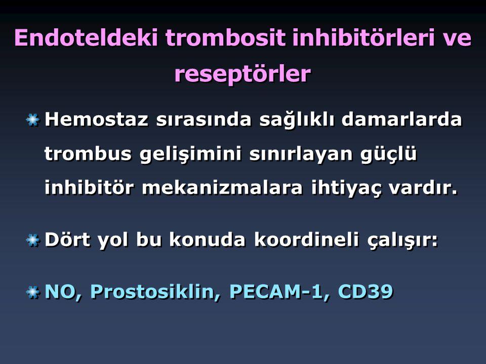 Endoteldeki trombosit inhibitörleri ve reseptörler