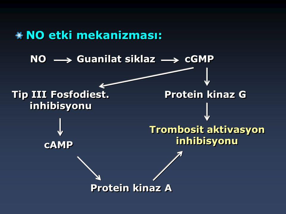 Tip III Fosfodiest. inhibisyonu Trombosit aktivasyon inhibisyonu