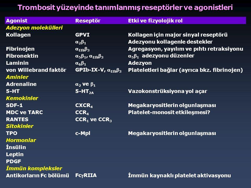 Trombosit yüzeyinde tanımlanmış reseptörler ve agonistleri