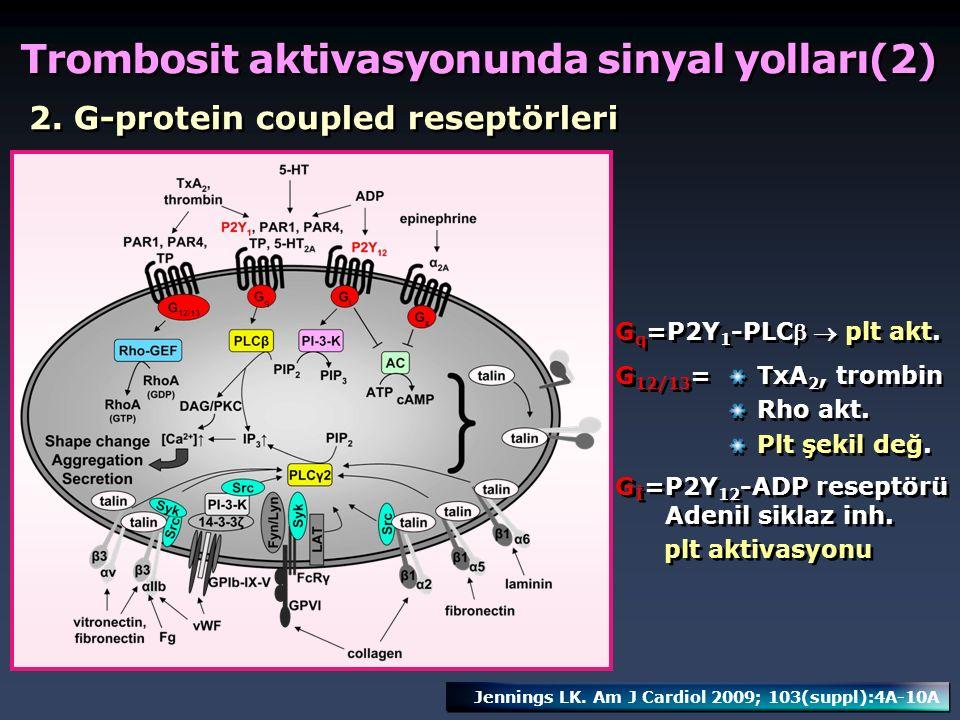 Trombosit aktivasyonunda sinyal yolları(2)