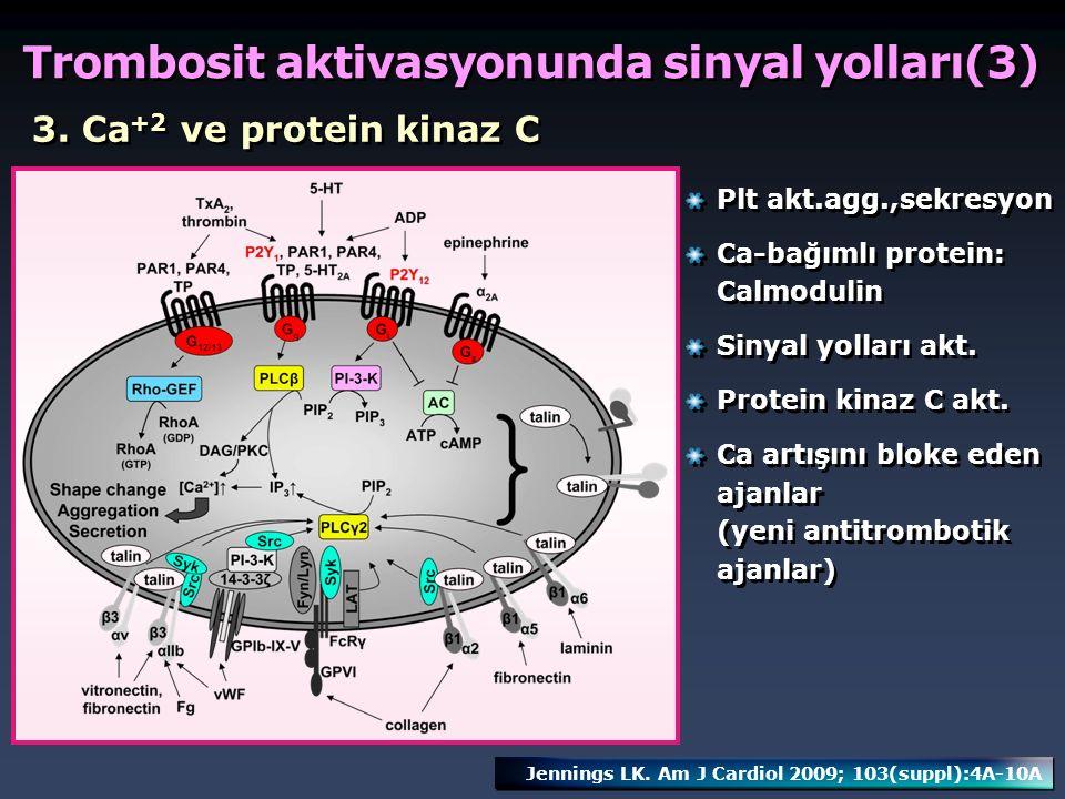Trombosit aktivasyonunda sinyal yolları(3)