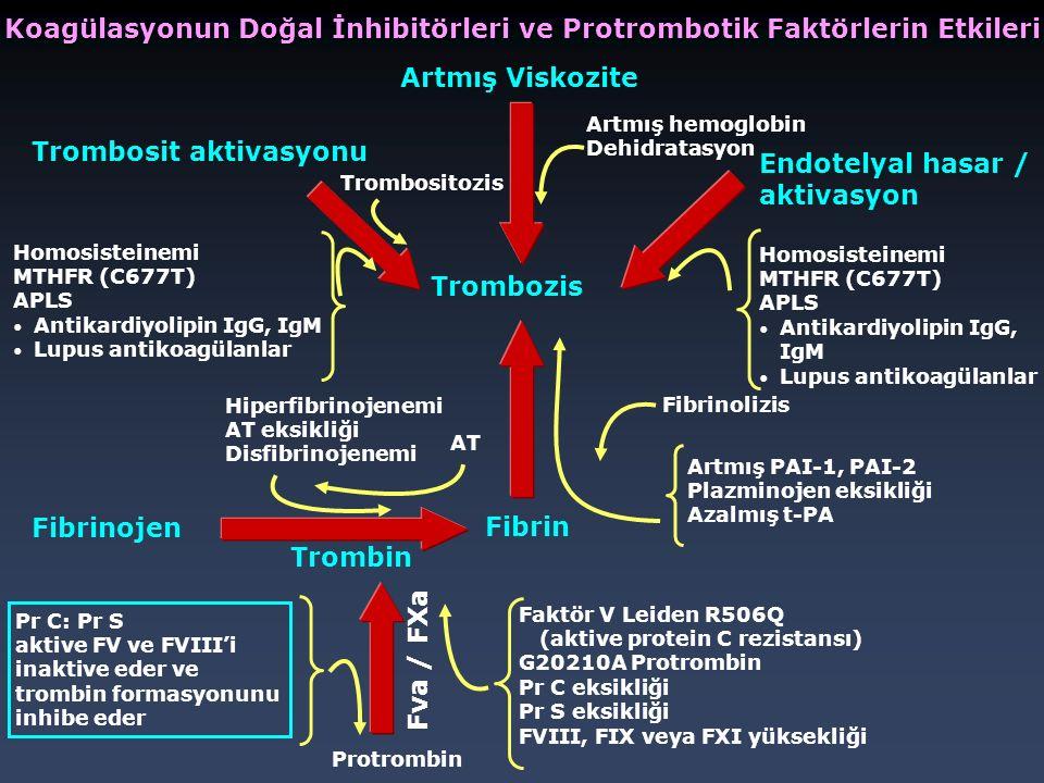 Koagülasyonun Doğal İnhibitörleri ve Protrombotik Faktörlerin Etkileri