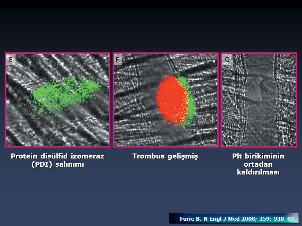 Protein disülfid izomeraz (PDI) salınımı Trombus gelişmiş