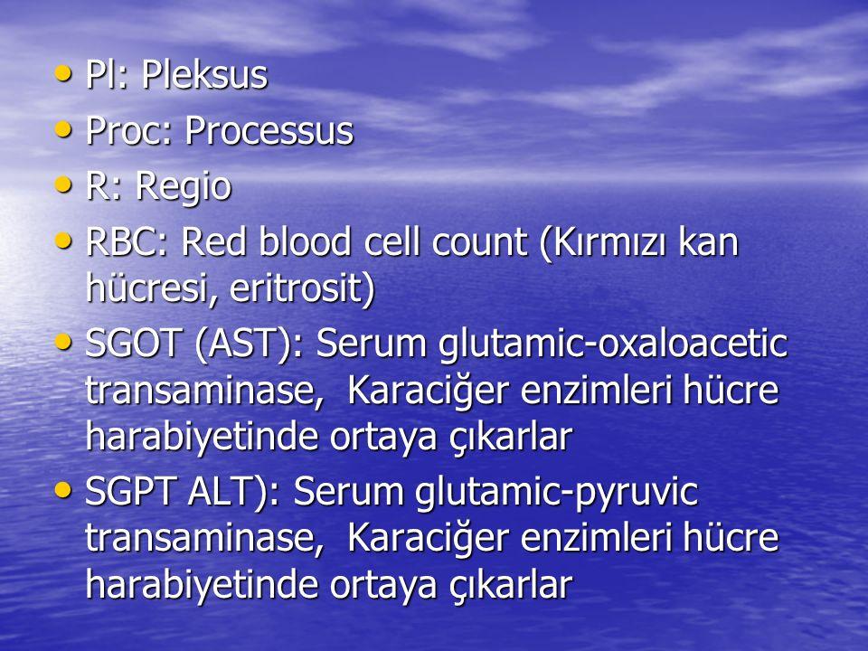 Pl: Pleksus Proc: Processus. R: Regio. RBC: Red blood cell count (Kırmızı kan hücresi, eritrosit)