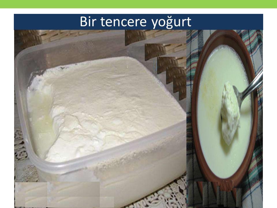 Bir tencere yoğurt
