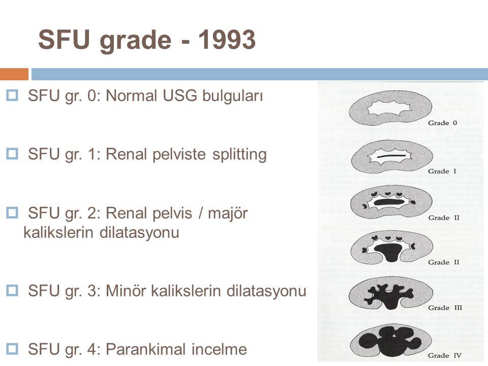 SFU grade - 1993 SFU gr. 0: Normal USG bulguları