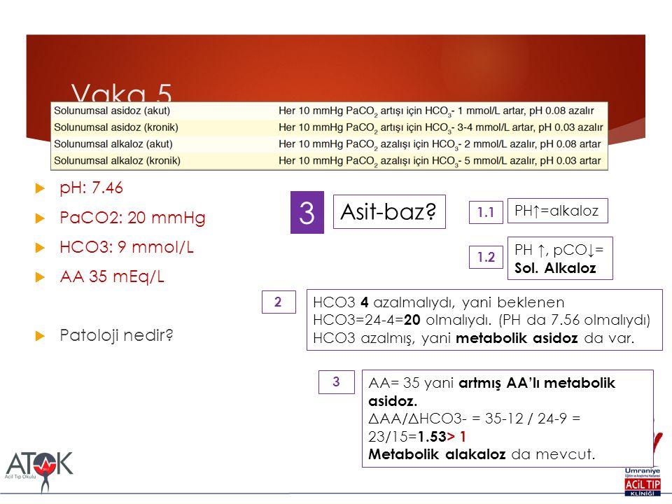 Vaka 5 3 Asit-baz pH: 7.46 PaCO2: 20 mmHg HCO3: 9 mmol/L AA 35 mEq/L