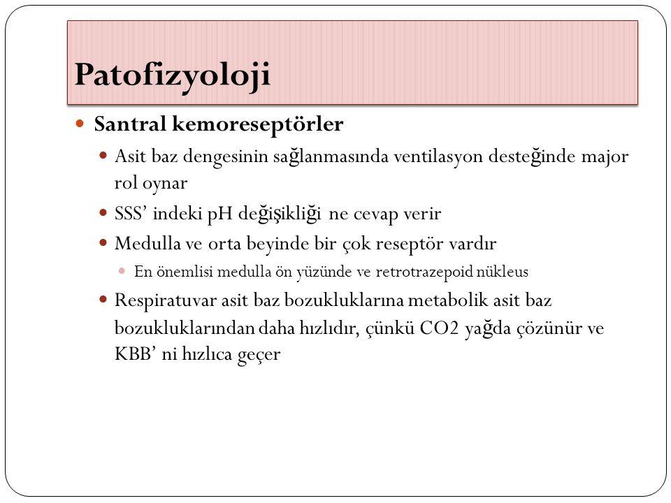 Patofizyoloji Santral kemoreseptörler