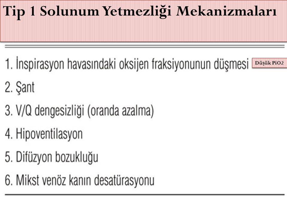 Tip 1 Solunum Yetmezliği Mekanizmaları