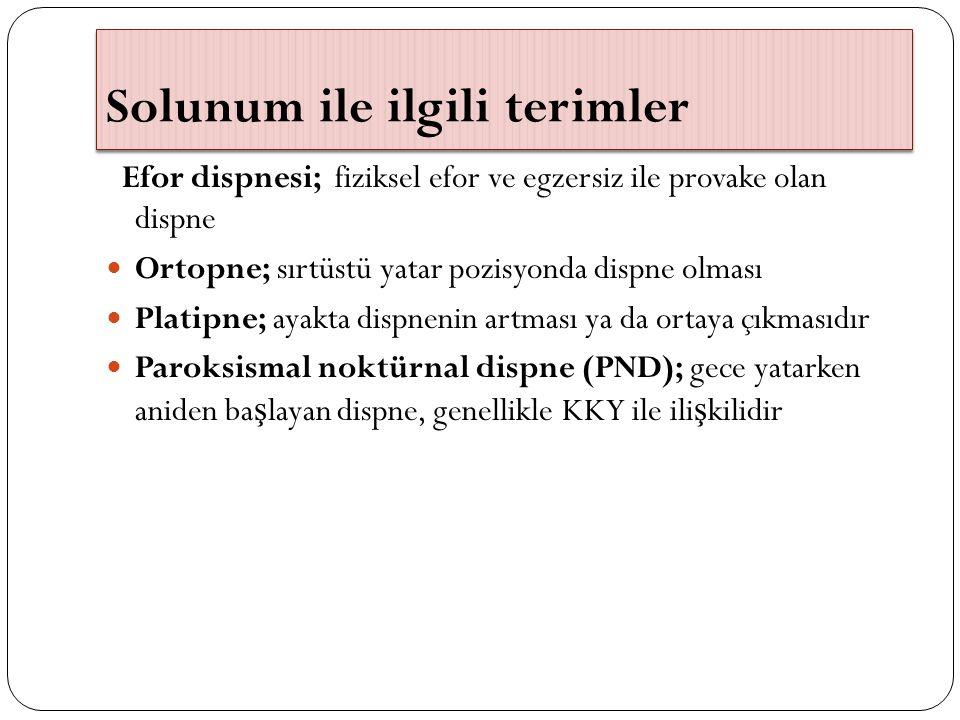 Solunum ile ilgili terimler