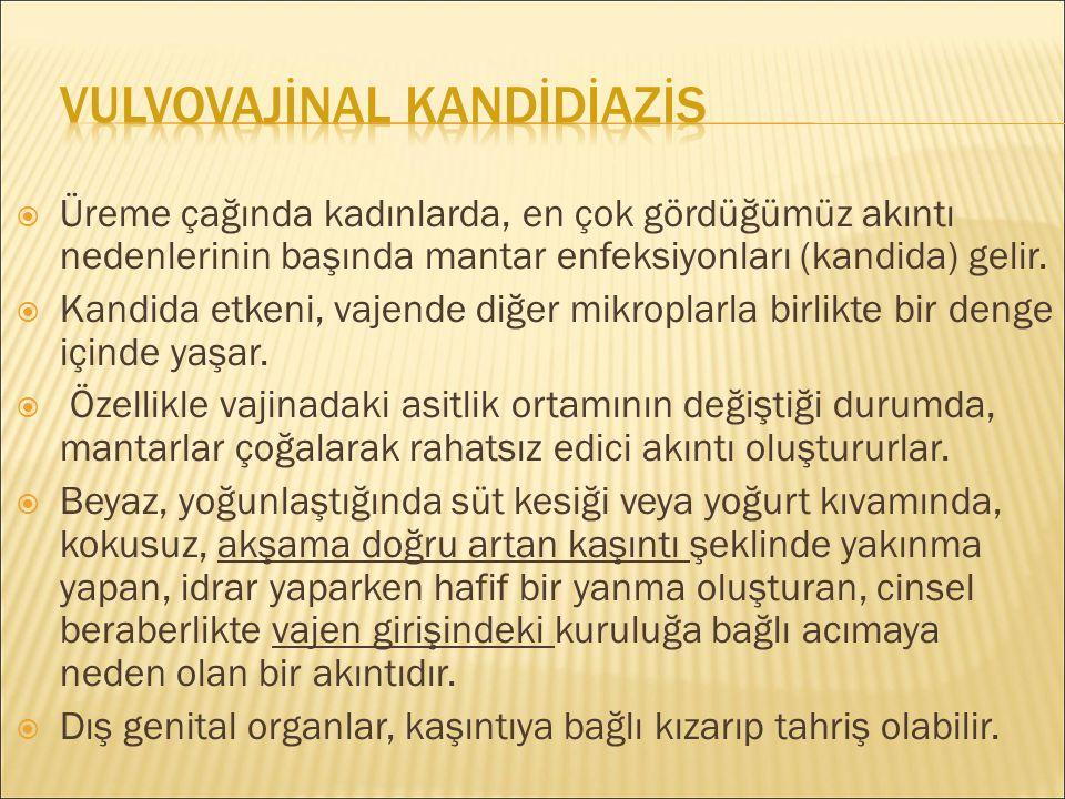 VULVOVAJİNAL KANDİDİAZİS