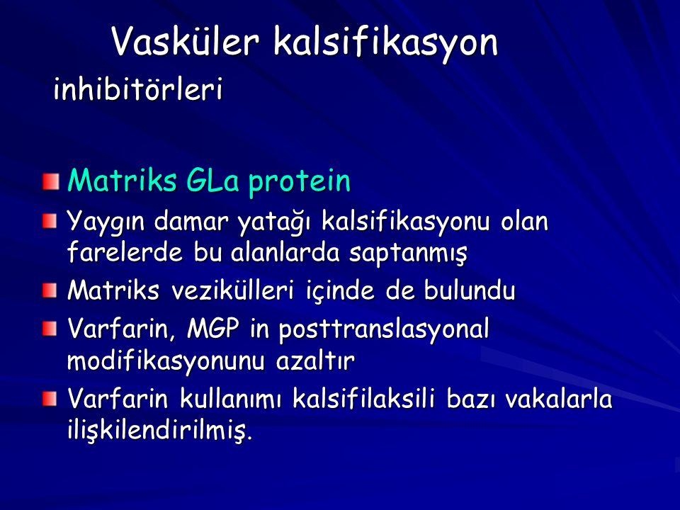 Vasküler kalsifikasyon inhibitörleri
