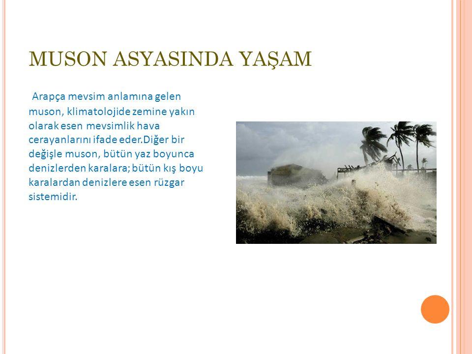MUSON ASYASINDA YAŞAM
