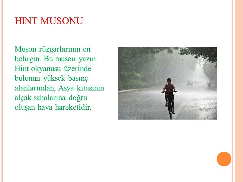 HINT MUSONU