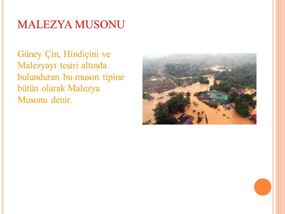MALEZYA MUSONU Güney Çin, Hindiçini ve Malezyayı tesiri altında bulunduran bu muson tipine bütün olarak Malezya Musonu denir.
