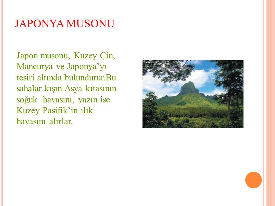 JAPONYA MUSONU