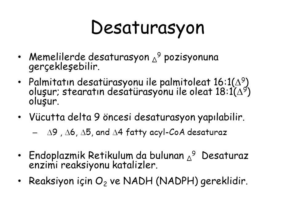 Desaturasyon Memelilerde desaturasyon Δ9 pozisyonuna gerçekleşebilir.