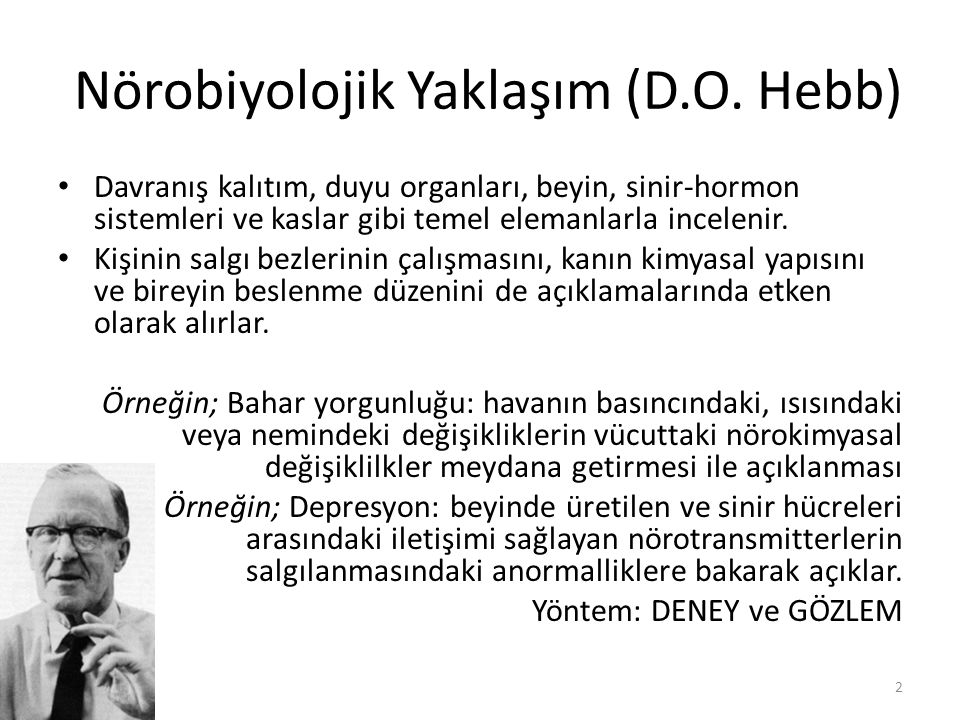 Nörobiyolojik Yaklaşım (D.O. Hebb)