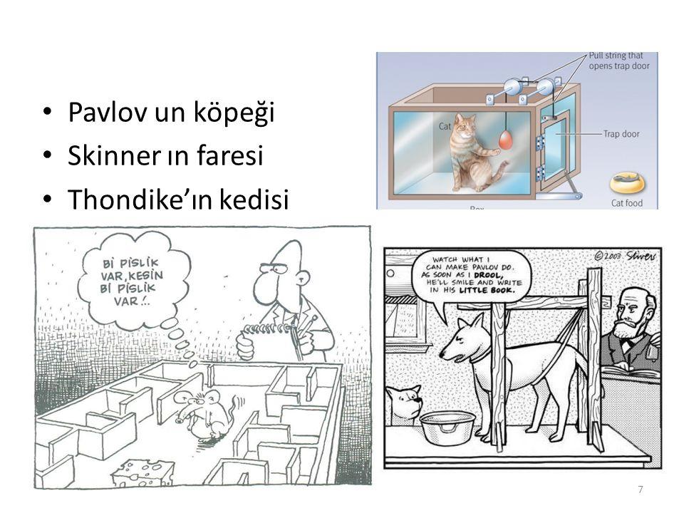 Pavlov un köpeği Skinner ın faresi Thondike'ın kedisi
