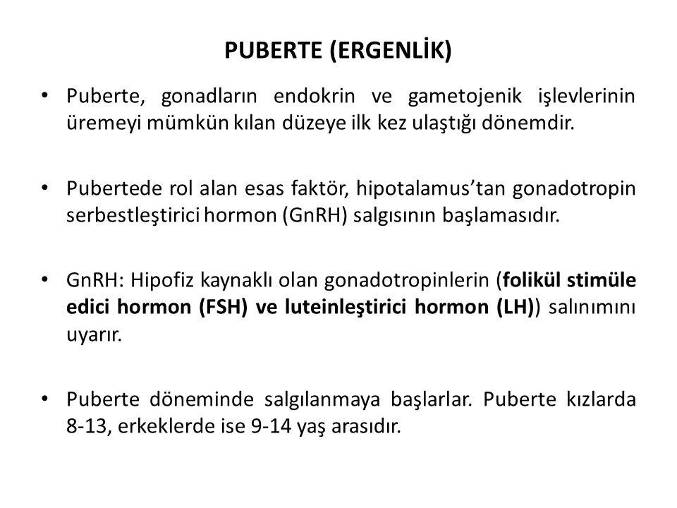 PUBERTE (ERGENLİK) Puberte, gonadların endokrin ve gametojenik işlevlerinin üremeyi mümkün kılan düzeye ilk kez ulaştığı dönemdir.