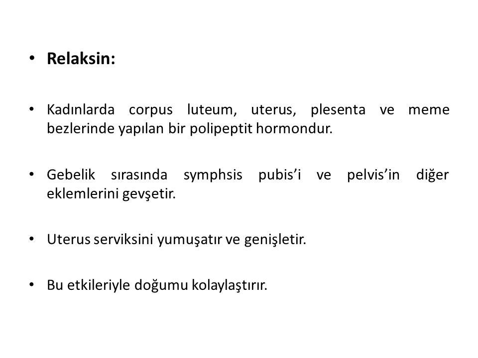 Relaksin: Kadınlarda corpus luteum, uterus, plesenta ve meme bezlerinde yapılan bir polipeptit hormondur.